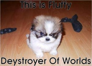 Fluffy-Destroyer-of-worlds